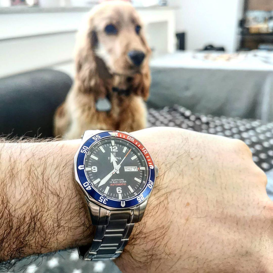 watch_watcher_germany